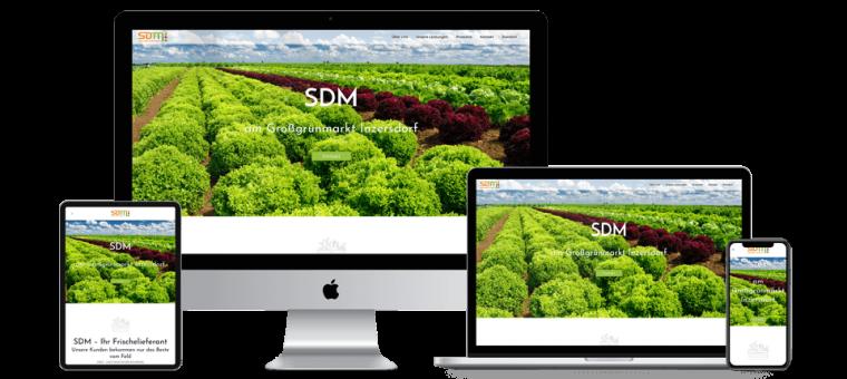 EasyHomepage_ResponsiveWebdesign_SDM